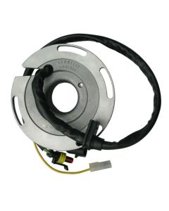 Sherco Stator Plate 02-05 (Discontinued)